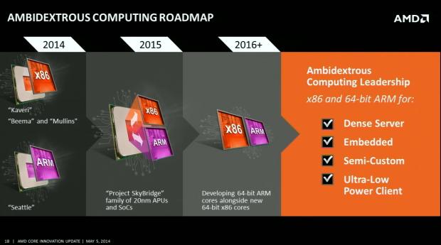 AMD-Skybridge-01