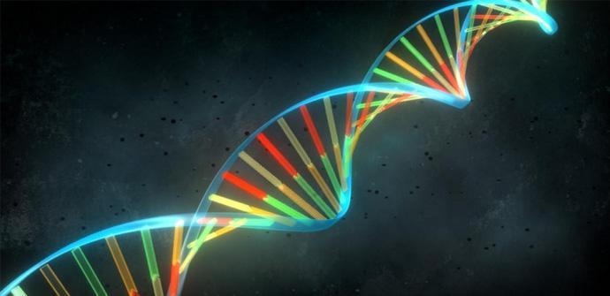 Demuestran que el ADN puede contener malware e infectar PCs