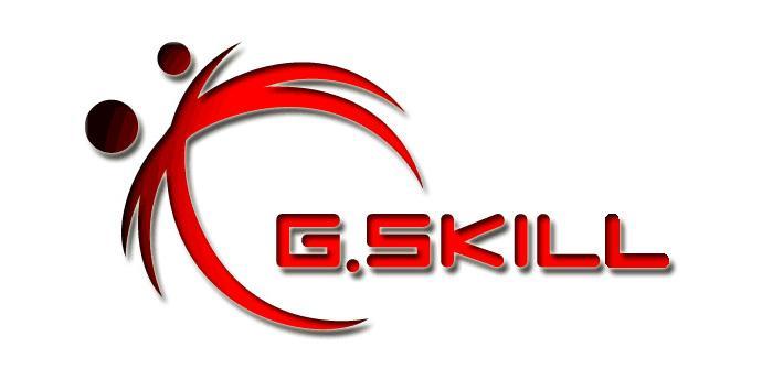 G Skill Logo