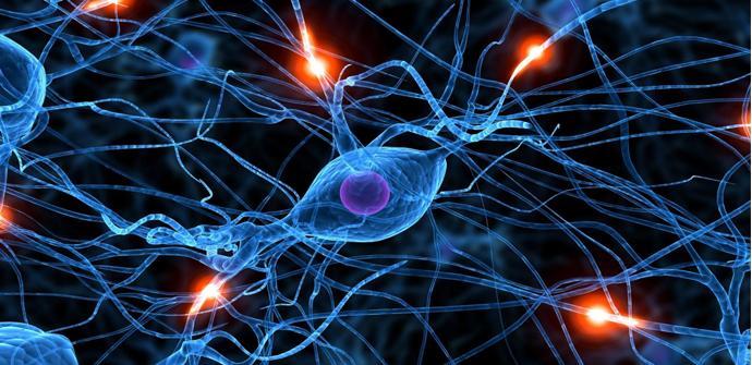 El chip neuromórfico Loihi de Intel nos hará avanzar en el desarrollo de la IA