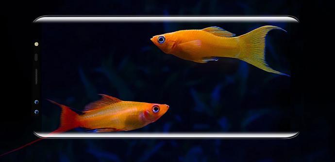 Ver noticia 'Blackview S8, Full Screen con gran diseño, y el más barato del mercado'