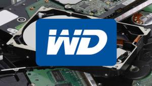 Western Digital Blue, Black, Red y Gold: qué disco duro comprar