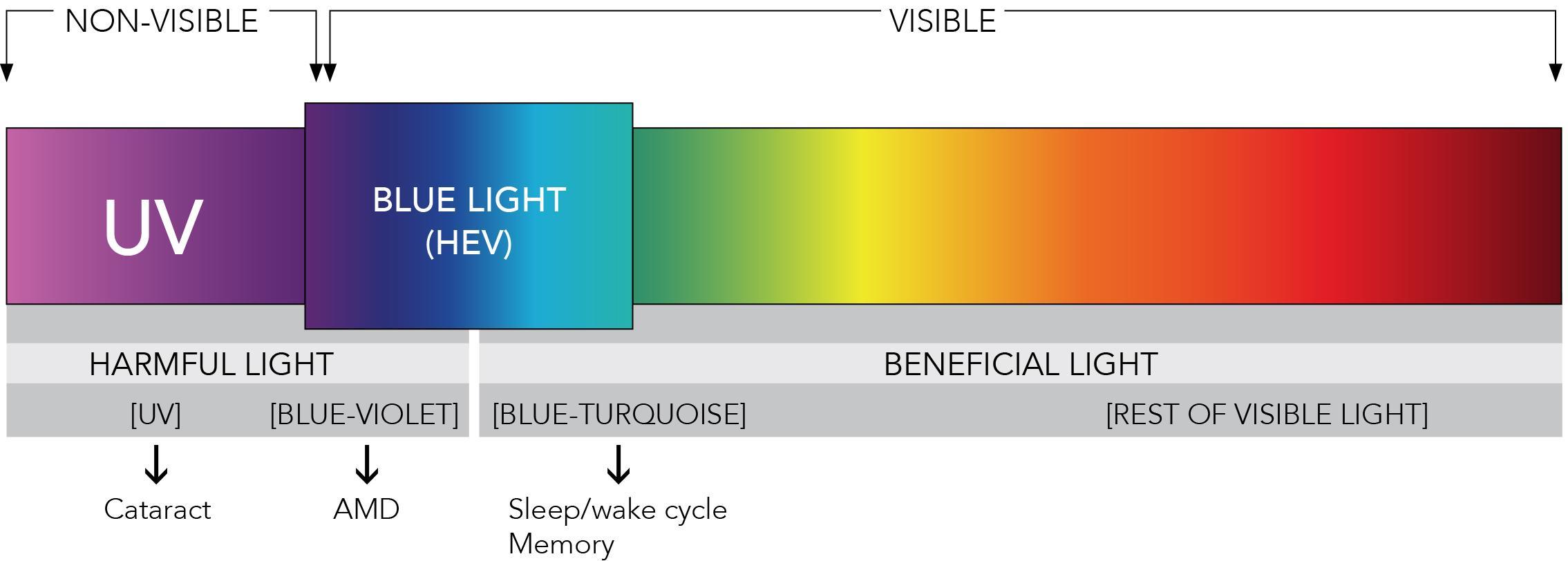 Filtro De Luz Azul Qu 233 Es Y Por Qu 233 Es Necesario En