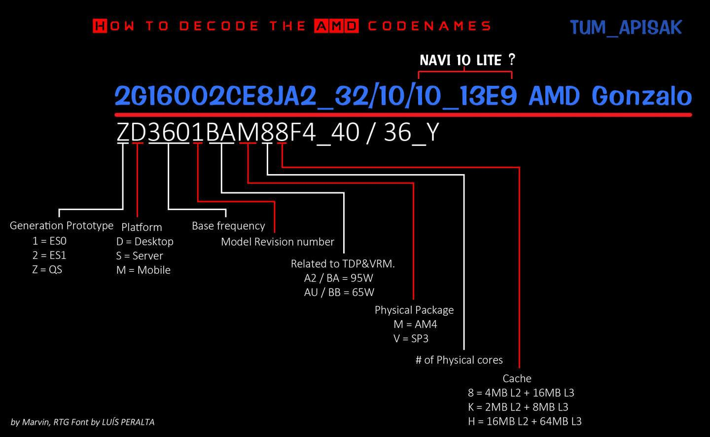 AMD Gonzalo 3