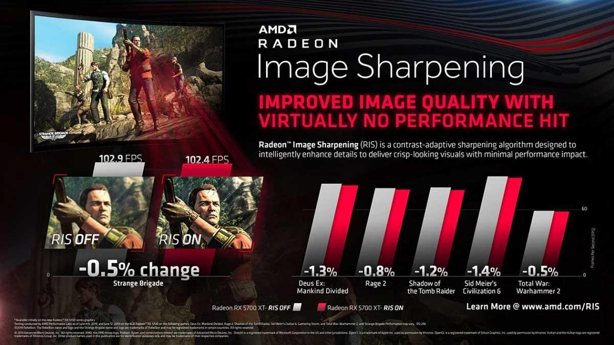 AMD-RIS