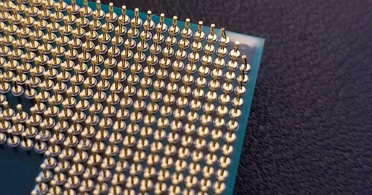 AMD-RYzen-pines