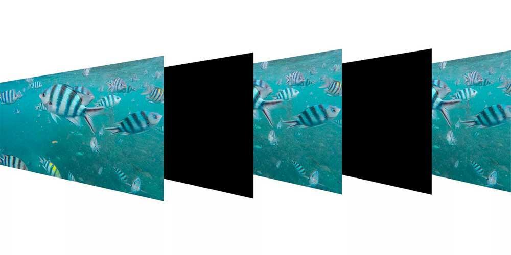 Black-Frame-Insertion-1
