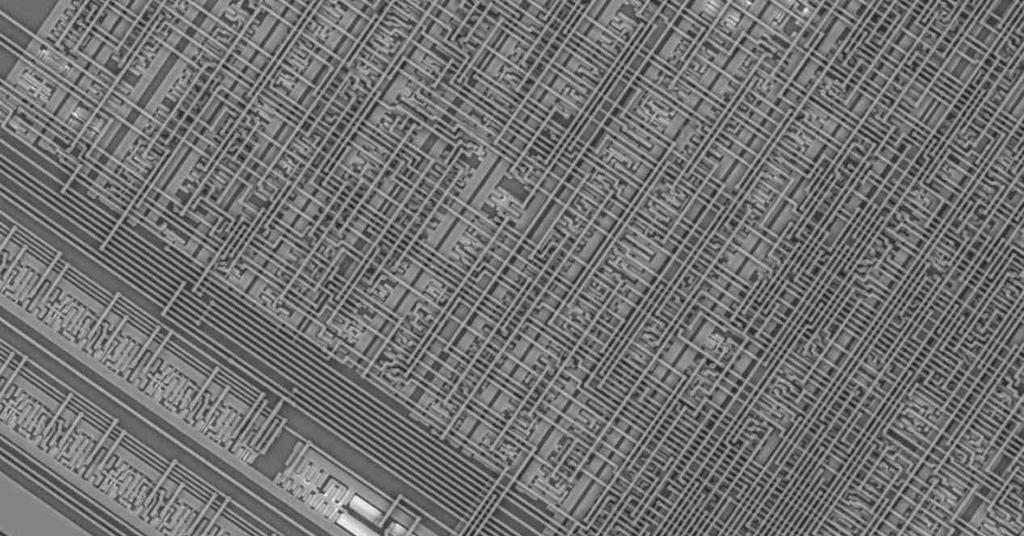 Zoom Microchip