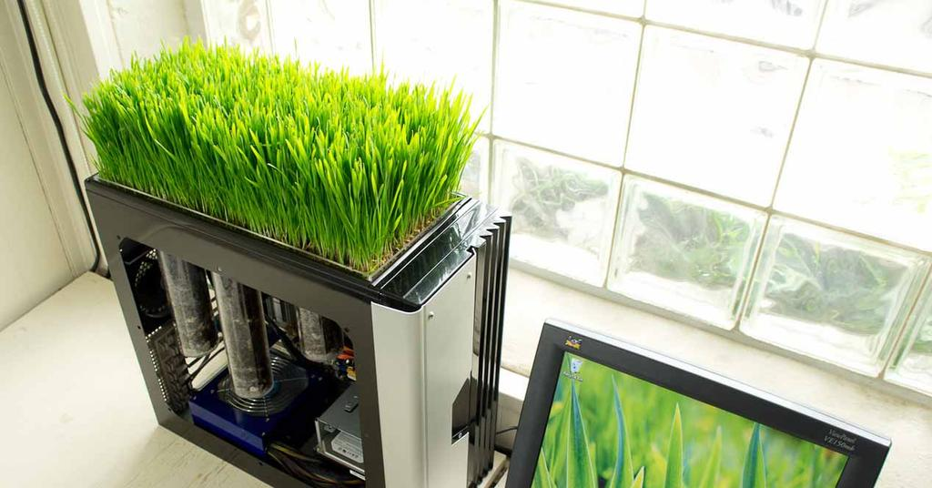Hardware vegano