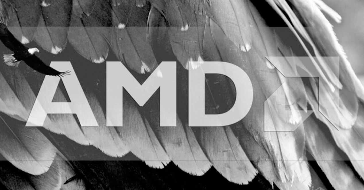 AMD Zen 4 Raphael