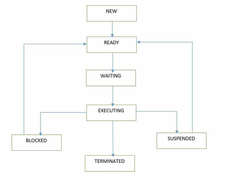 Procesos Sistema Operativo