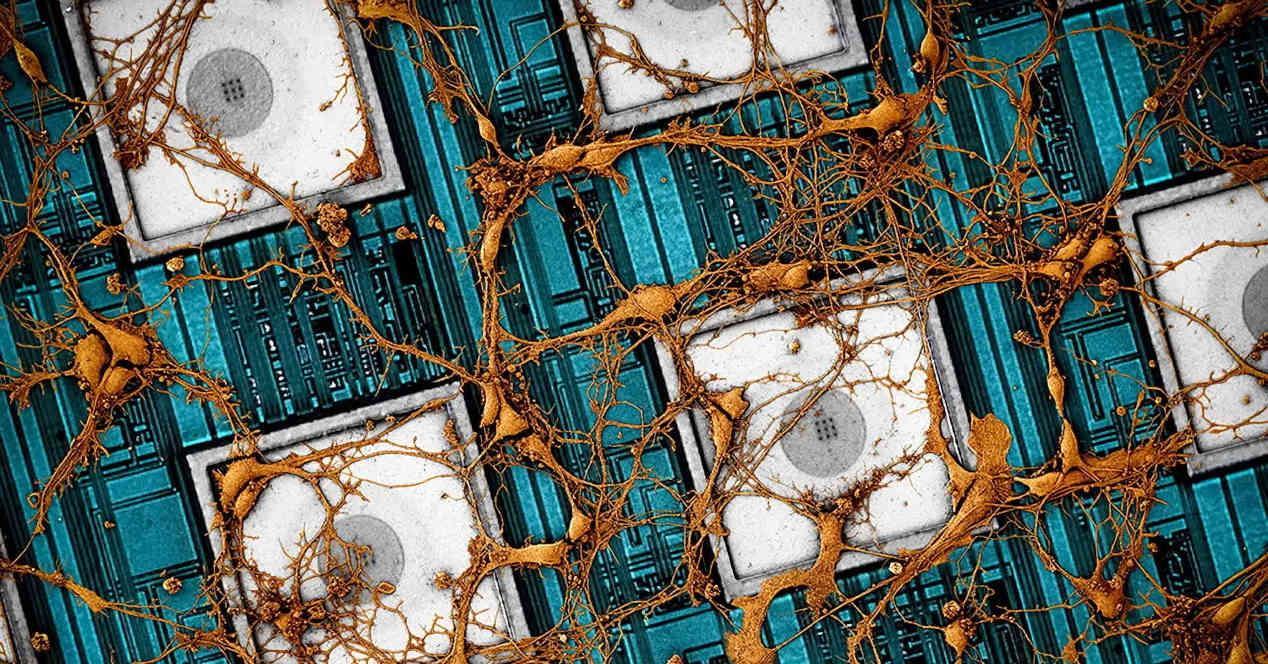 Portada Cerebro Samsung