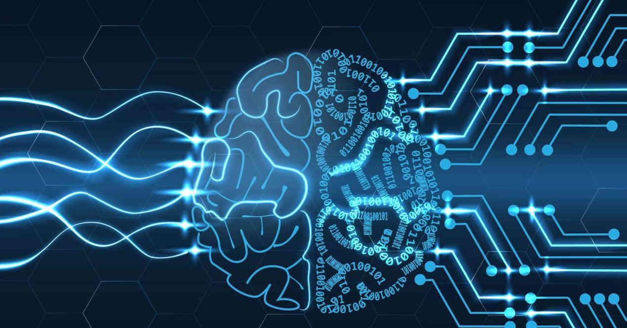 Cerebro Algoritmo IA