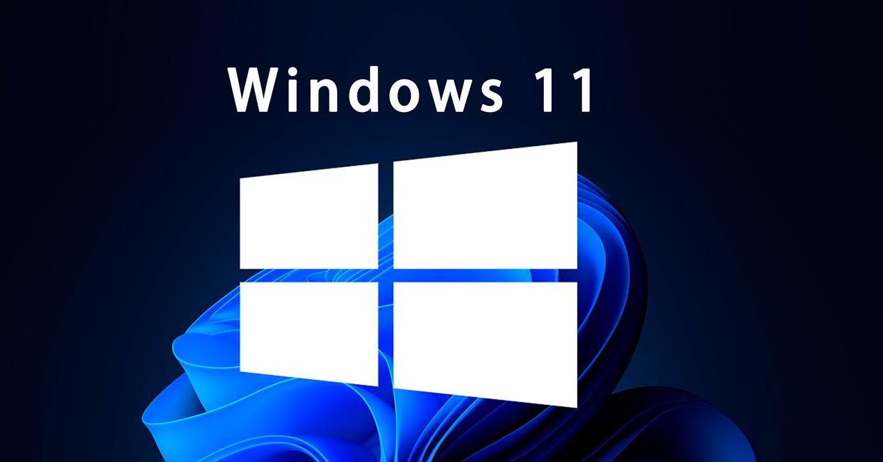 Windows 11 logo y fondo oficial